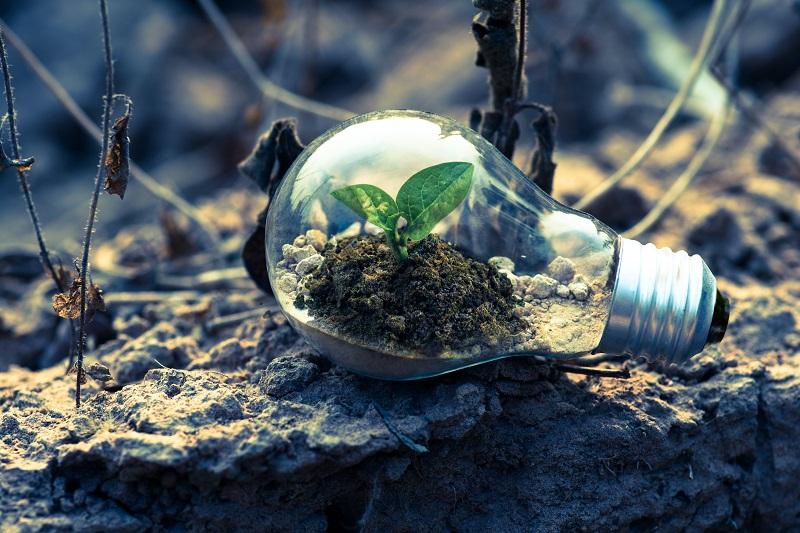 Der beste Abfall ist Zero Waste: Abfall, der gegen null tendiert